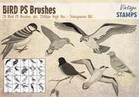 Bird PS Brushes