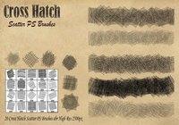 Escobillas de escobilla Cross Hatch Scorters PS