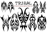 Tribal PS Bürsten abr