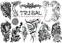 Tribal PS Bürsten Vol.2