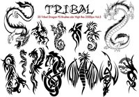 Tribal Dragon PS Pensels Vol.5