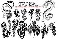 Tribal dragon ps borstar vol.5