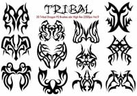 20 Tribal PS Brushes Vol.9