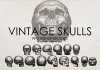Free Vintage Skulls Photoshop Brushes