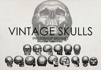 Free Vintage Skulls Photoshop Brushes