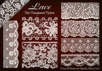 20 Lace PS Brushes abr vol 6