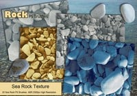 Sea Rock PS Borstels abr.