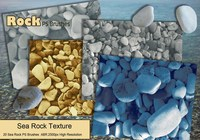 Sea Rock PS Pinceles abr.