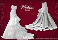 Wedding Dress PS Brushes abr