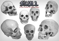 Skull PS Brushes abr