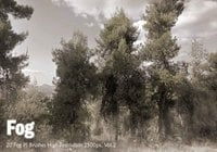 20 Fog PS Brushes abr vol.2