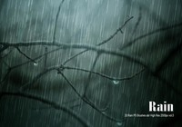 20 Rain PS Brushes abr vol.6