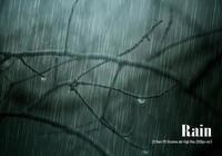 20 Rain PS Brushes abr vol.6