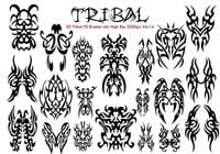 20 Tribal PS Bürsten Vol.14