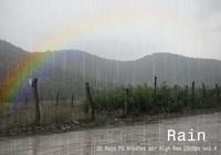 20 Rain PS Brushes abr vol.4