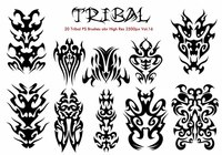20 Tribal PS Brushes Vol.16