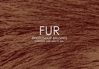 Free Fur Photoshop brushes