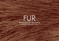 Free Fur Photoshop brushes