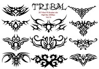 20 tribal ps borstar vol.16