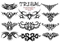 20 Tribal PS Borstels vol.16