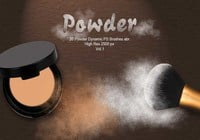 20 Powder Dynamic PS Brushes.abr  Vol.1