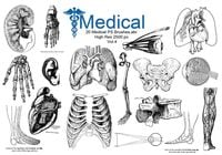 20 Medical PS Brushes.abr Vol.4
