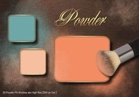 20 Powder PS Brushes.abr Vol.2