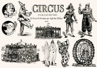 20 Gegraveerde Circus Ps Borstels vol.6