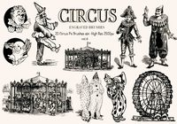 20 Graverade cirkus Ps Borstar vol.6