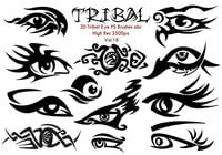 20 Tribal Eye PS Bürsten Vol.18