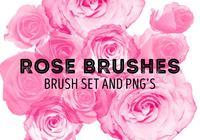 Escovas de rosa