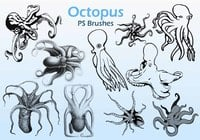 20 Octopus PS Borstels abr.
