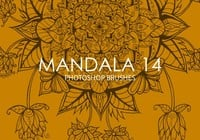 Pinceles gratuitas do mandala photoshop 14