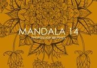 Free Mandala Photoshop Brushes 14