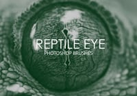 Free Reptile Eye Photoshop Brushes
