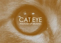 Free Cat Eye Photoshop Brushes