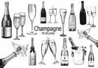 20 Champagner-PS-Bürsten abr.vol.5