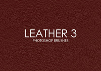 Free Leather Photoshop Brushes 3