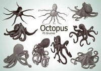 20 Octopus PS-borstar abr.vol.3