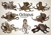 20 Octopus PS Brushes abr.vol.2