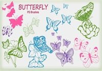 20 Butterfly PS Bürsten abr.Vol.6