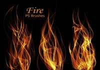 20 Fire PS-borstar abr.Vol.9
