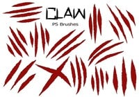 20 Claw Scratch PS Pinceles ABR. Vol.6