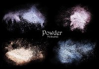 20 Powder PS Brushes.abr Vol.4