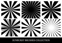 Sunbusrt Brush Collection
