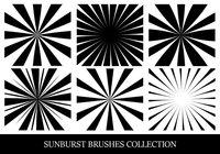 Sunbusrt penseel collectie