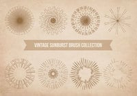 Vintage Sunburst Brushes