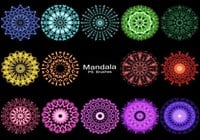 20 Mandala PS Pinceles abr. Vol.6
