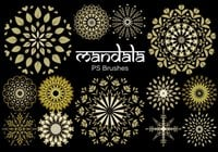 20 Mandala PS Pinceles abr. Vol.7
