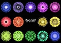 20 Mandala PS Pensels abr. Vol.5